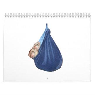 Ferret Calendar 2011