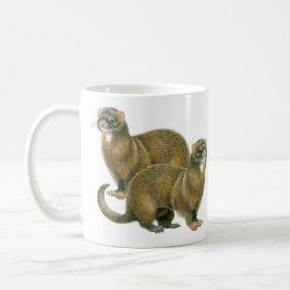 Ferret, Polecat Gift Mug