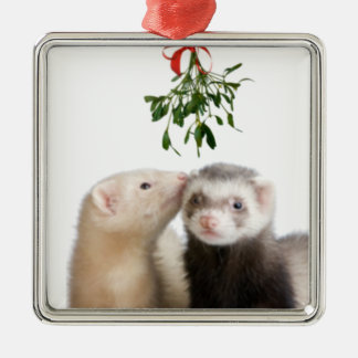 Ferret Smooches ornament