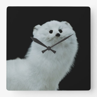 Ferret Taxidermy Mount Square Wall Clock