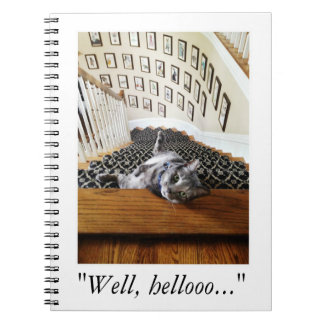 Ferris Mewler is hitting on you. Spiral Note Book