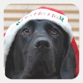 Festive Black Labrador Square Sticker