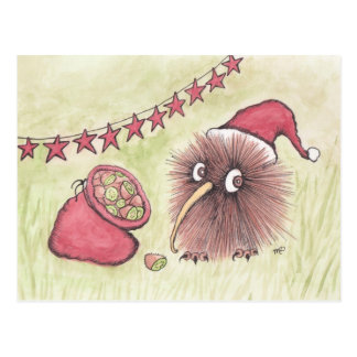 Festive Kiwi Bird Santa Postcard