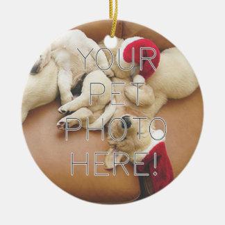 Festive Pet Appreciation Ornament