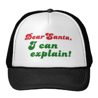 FGD - Dear Santa, I can explain Cap