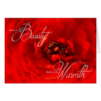 Fibromyalgia Get Well with Vibrant Red Flower Card