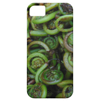 Fiddlehead Ferns Barely There iPhone 5 Case