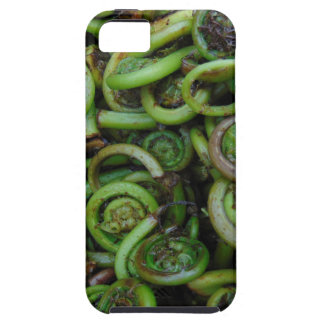 Fiddlehead Ferns Case For The iPhone 5
