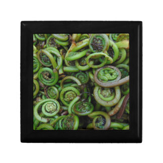 Fiddlehead Ferns Gift Box