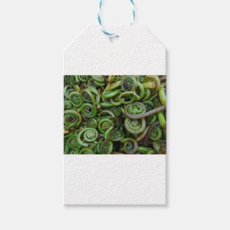 Fiddlehead Ferns Gift Tags