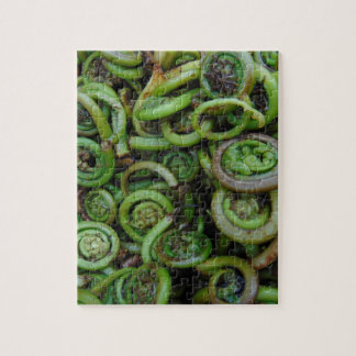 Fiddlehead Ferns Puzzles