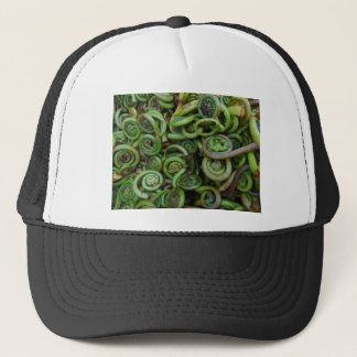 Fiddlehead Ferns Trucker Hat