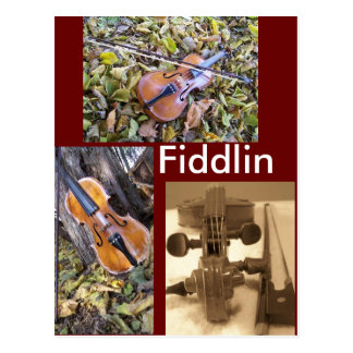 fiddlin fanatic postcard
