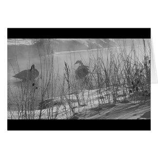 Fidelity ~ winter swans card
