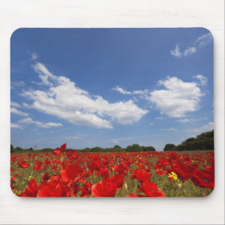 Field Full Of Red Flowers Mouse Pad