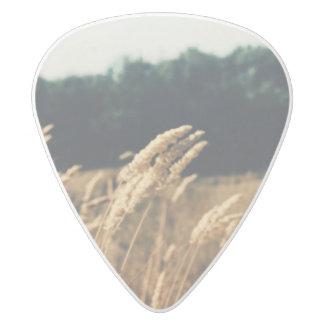Field Guitar Pick