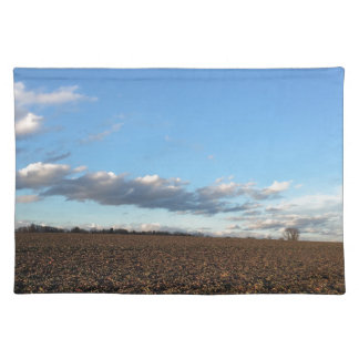 Field in spring placemat
