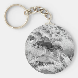 Field of Basalt Basic Round Button Key Ring