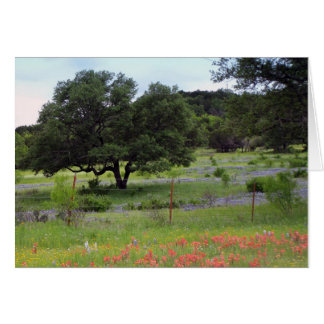 Field of Bluebonnets and Indian paintbrush Greeting Card