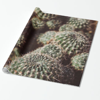 Field of Cacti, Warm Red Botanical Photograph Wrapping Paper