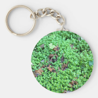 Field of Clovers Basic Round Button Key Ring