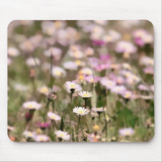 Field of Daisies Photo Mousepads