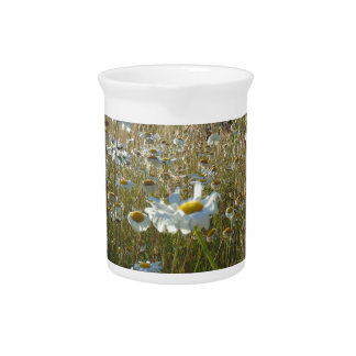 Field of Daisies Pitcher