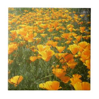 Field of Dreams Ceramic Tile