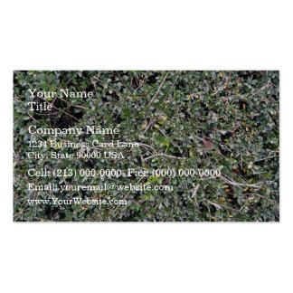 Field of Dry Cut Grass Business Card Templates