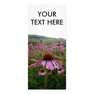 Field of flowers | rack card