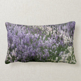 Field Of Lavender Cushion