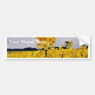 Field Of Oilseed Rape Car Bumper Sticker