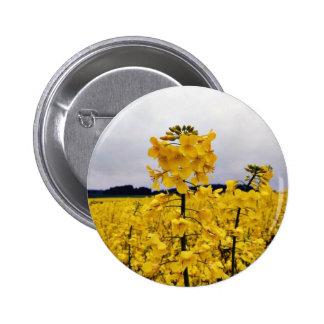 Field Of Oilseed Rape Pinback Button