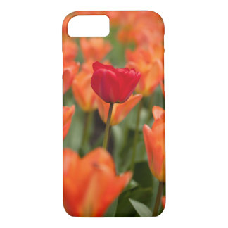 Field of poppies iPhone 7 case