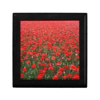 Field of Red Poppies Gift Box