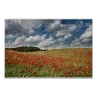 Field of Red Poppies with Dramatic Blue Sky Poster