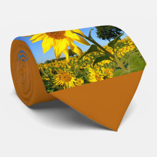 Field Of Sunflowers 1.4, Sunflower Tie
