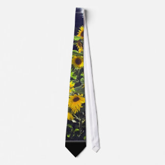 Field Of Sunflowers In Blossom Tie
