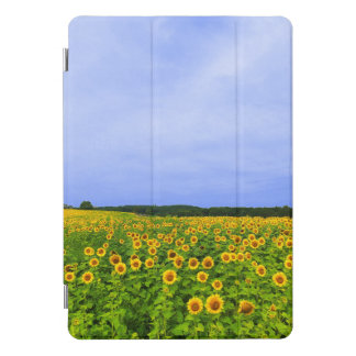 Field of Sunflowers iPad Pro Cover