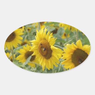 Field of Sunflowers Oval Sticker