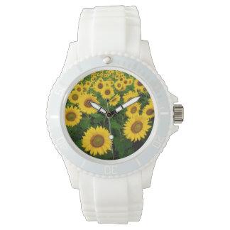 Field of Sunflowers Watch