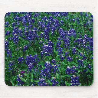 Field of Texas Bluebonnets Mouse Pad