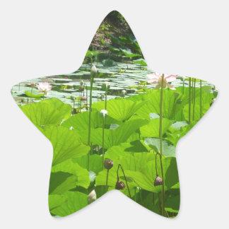 Field of Water Lilies Star Sticker