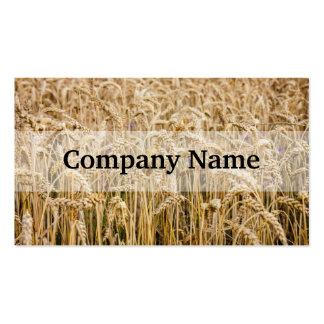 Field Of Wheat, Golden Grains Business Card