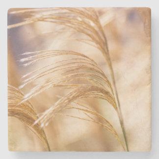 Field of Wheat Stone Coaster