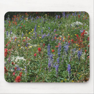 Field of Wildflowers Mouse Pad