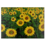 Field of Yellow Sunflowers Flower Cutting Boards