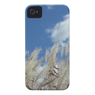 Field Photo Gift iPhone 4 Covers