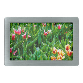 Field with Pink and Yellow Tulips Belt Buckle