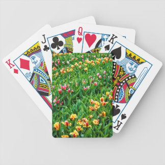 Field with Pink and Yellow Tulips Bicycle Playing Cards